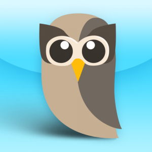 Hootsuite icon of their mascot, an owl.