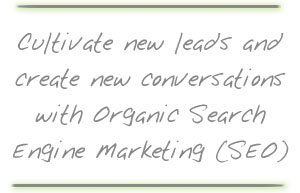 Organic Search Engine Optimization / Marketing (SEO)
