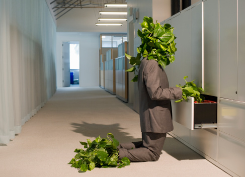 plant-man accessing file cabinet