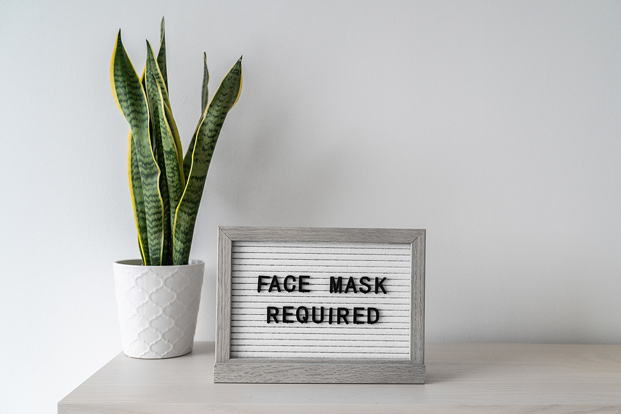 """A sign on top of a table next to a plant that reads """"Face Mask Required"""""""